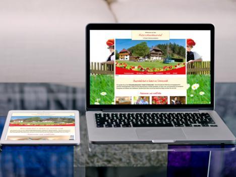 Internetseite Hinterschlauchbauernhof, Gutach