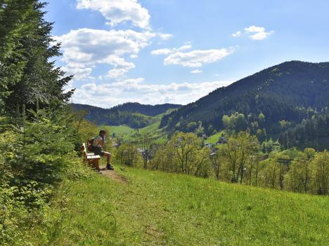 Ausblick vom Gugg-amol-Wegle, Oberwolfach
