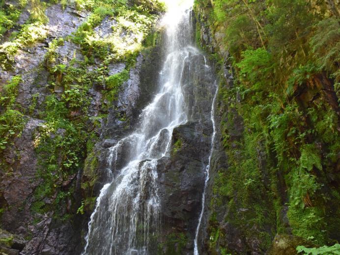 Im Wolftal kann man den Burgbach-Wasserfall genießen