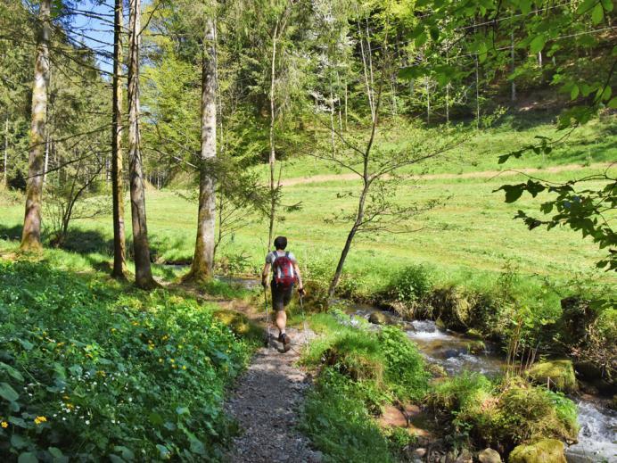 Gugg-amol-Wegle, Oberwolfach