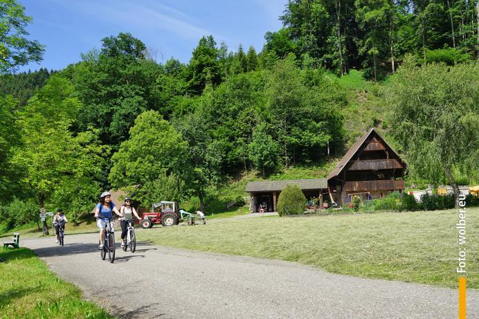 Die Landschaft im Wolftal lädt zum Radeln ein!