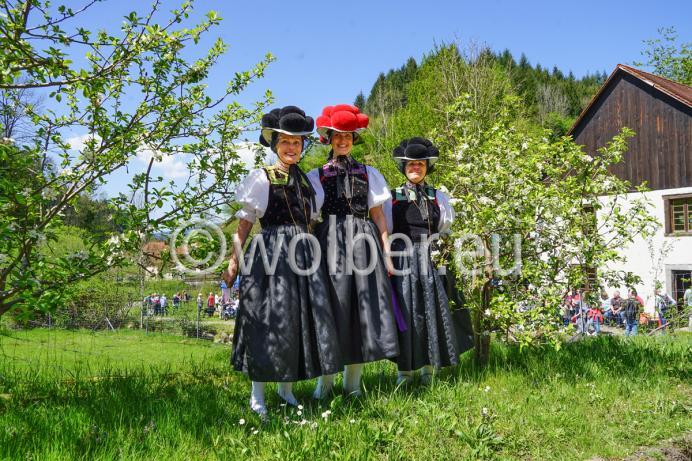 Roter und schwarzer Bollenhut aus Kirnbach