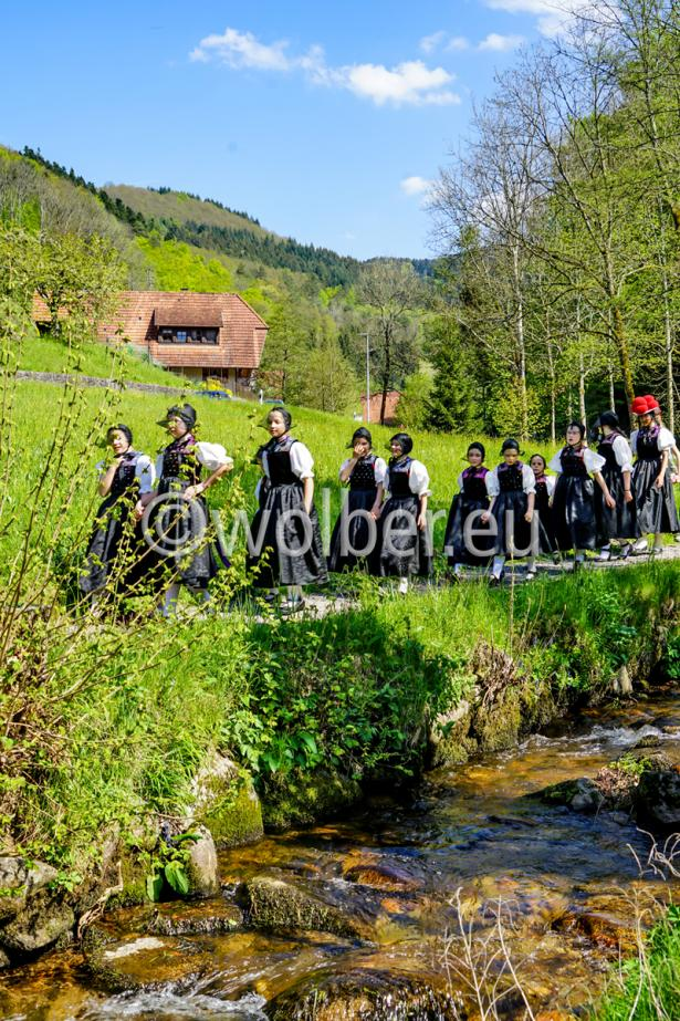 Unterwegs auf dem Kirnbacher Bollenhut-Talwegle